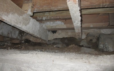 Crawlspace: Yes we go in there.